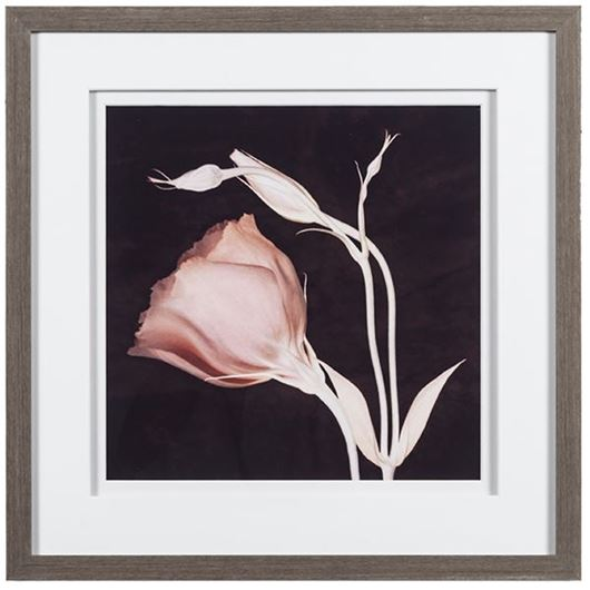 Picture of Framed Print Simplicity 45x45 grey