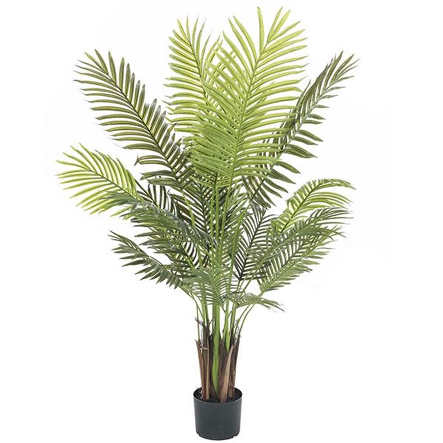 Picture of ARECA PALM tree h150cm green