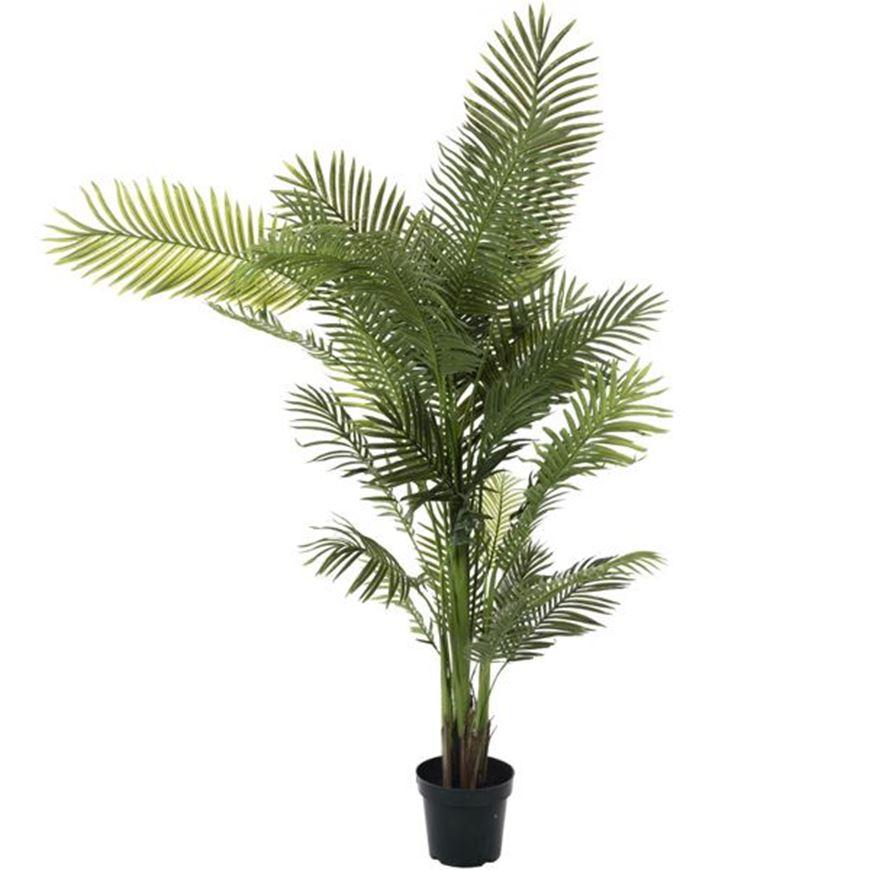 ARECA PALM tree h210cm green