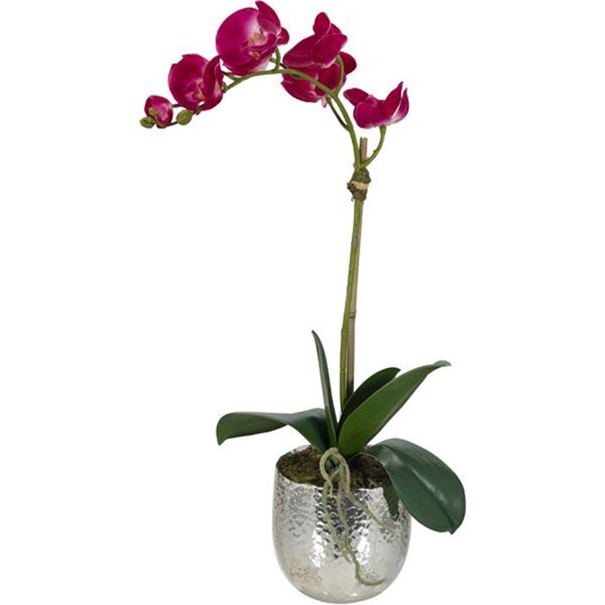 Picture of ORCHID pot h55cm purple/silver