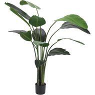 STRELITZIA plant h190cm green