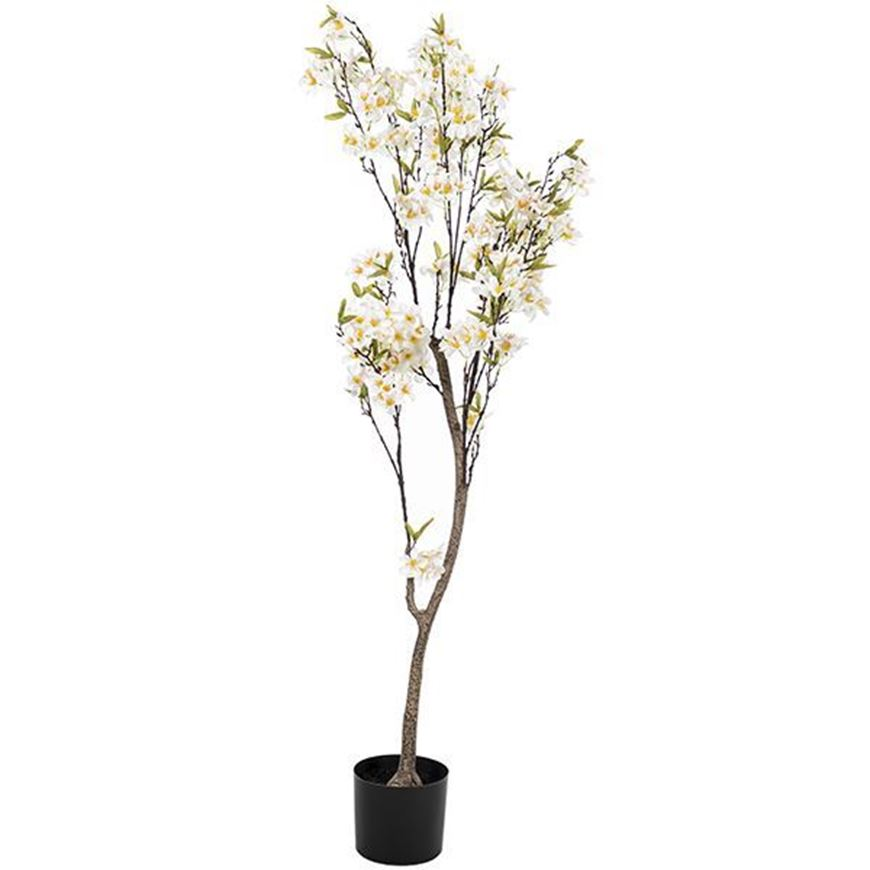 APPLE BLOSSOM tree h150cm white