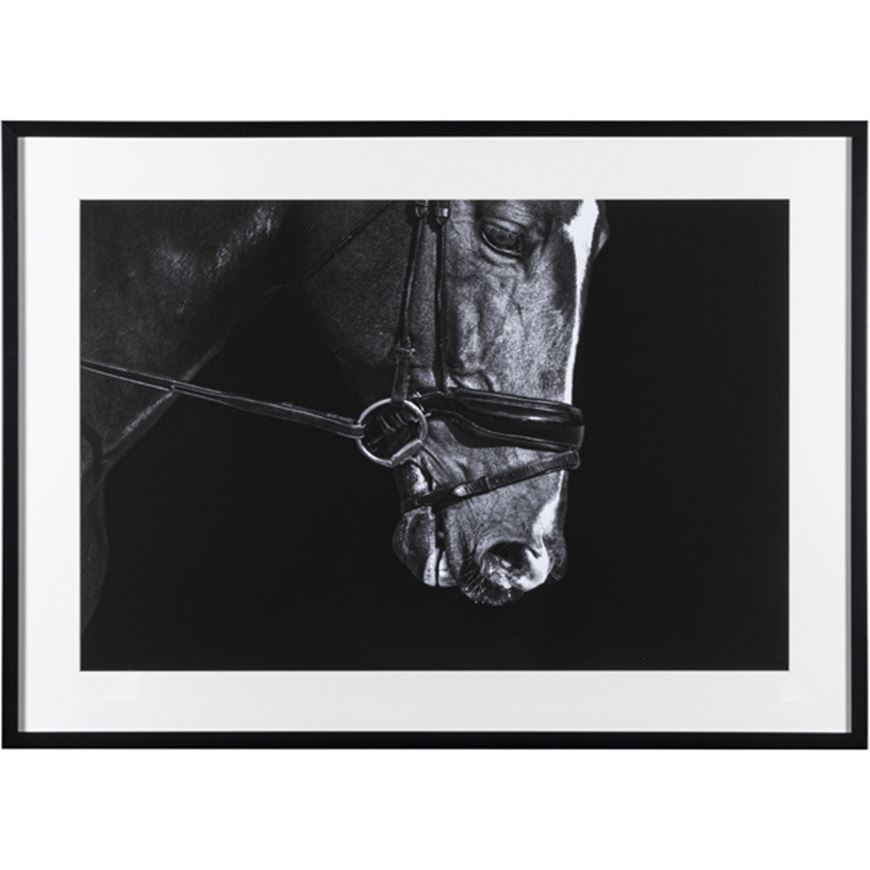 Picture of DOCILE Horse print 107x78 black